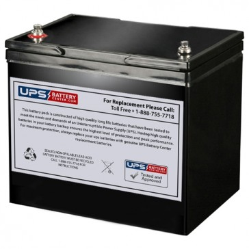 SES BT80-12 12V 80Ah T9 battery