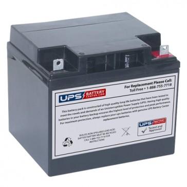 MaxPower NP45-12 12V 45Ah Battery