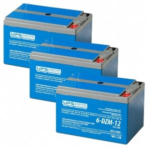 TaoTao E2-500 36V 12Ah Battery Set